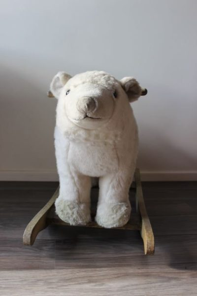 ours polaire à bascule